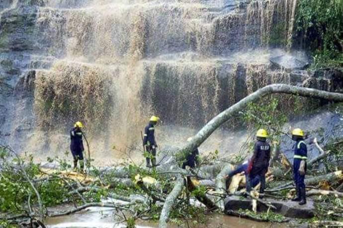 ghana-waterfall-tree-falls