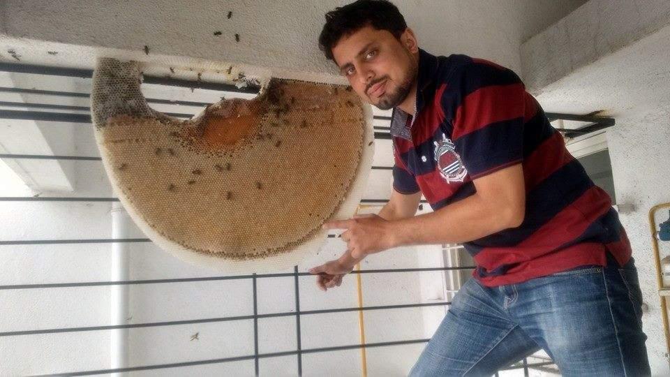 Rahul_Park_Honey_comb_Amit