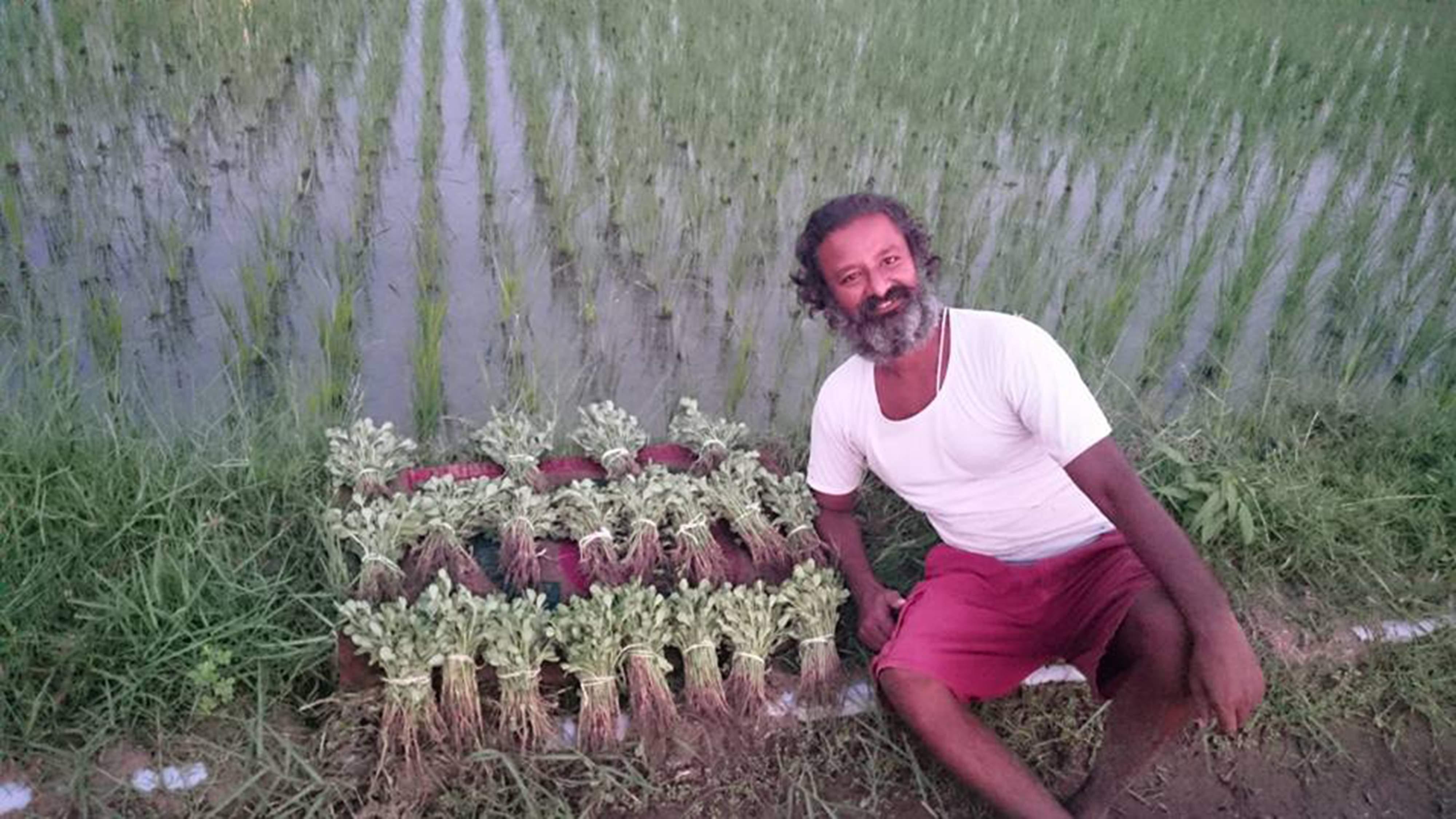 HariNath's produce