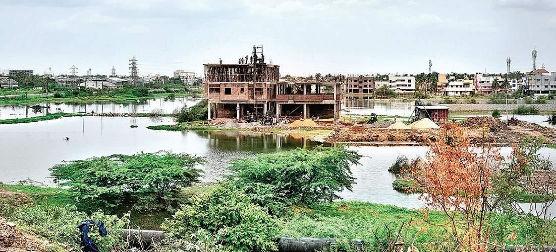 Pond_Restoration