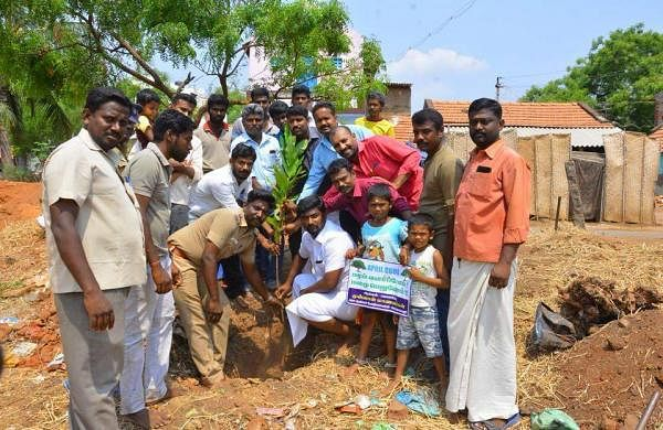 Nearly 45 members, including the alumni, joined hands to plant trees and saplings in their area in a bid to tackle the heat