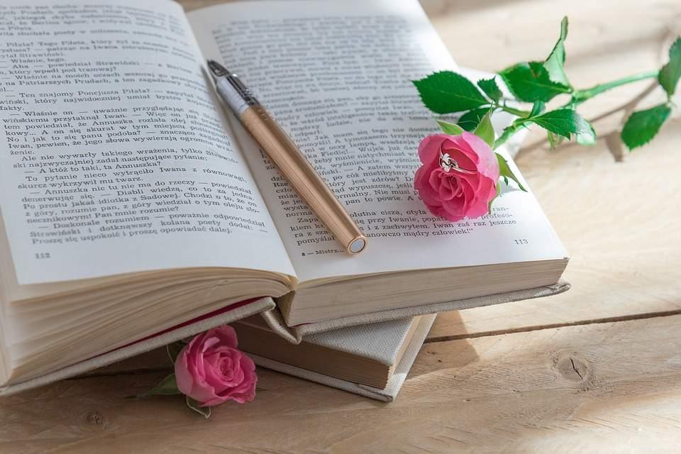 book-2124636_960_720
