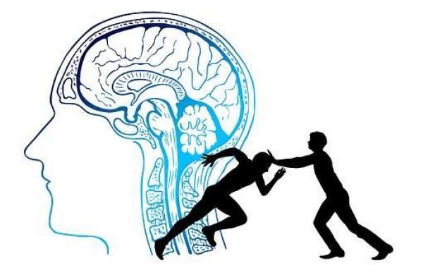 brain-4065088__340