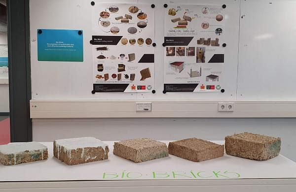 Sugarcane bio-bricks | IIT Hyderabad