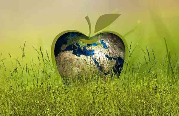 sustainability-3295824_1280