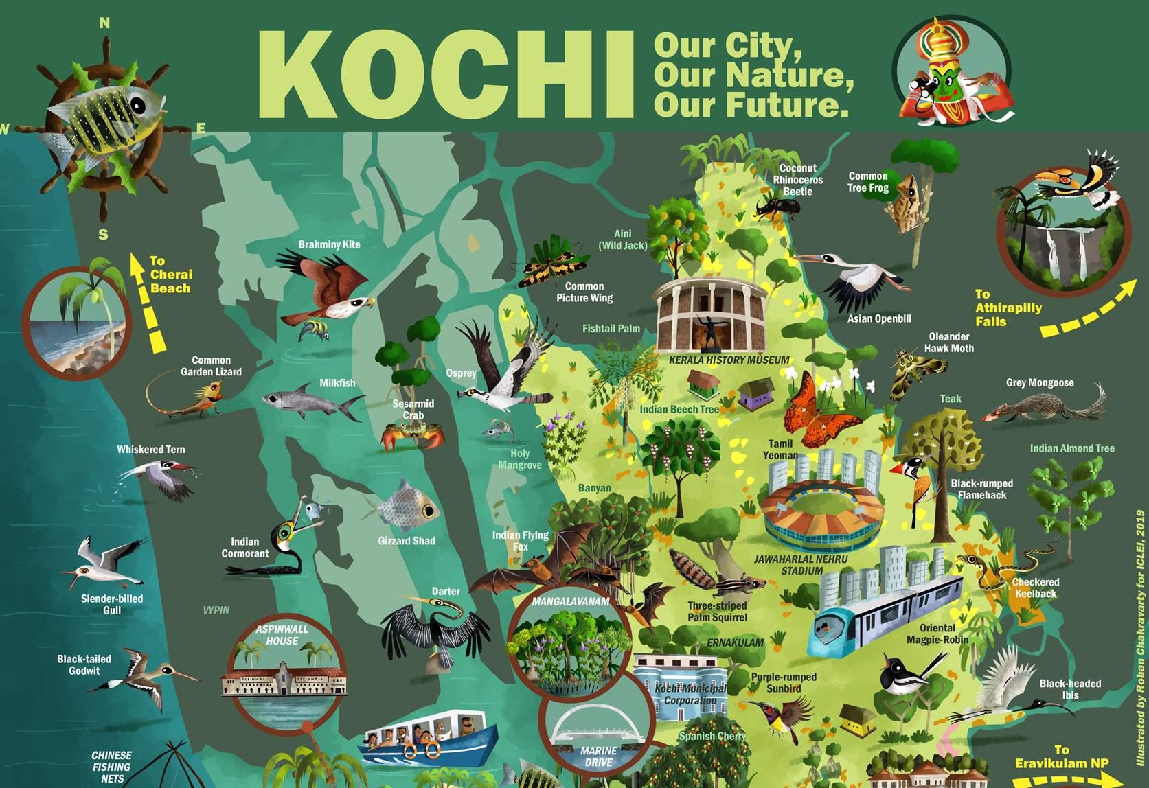 kochi_web_(1)
