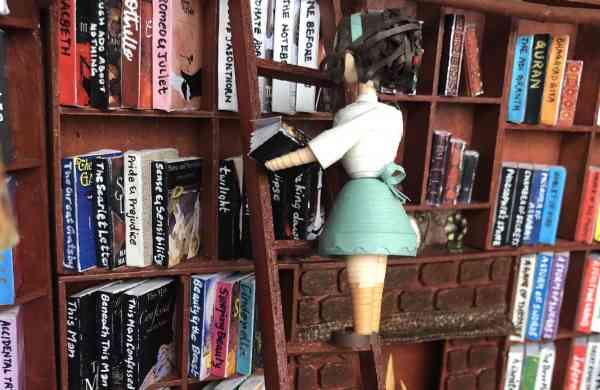 Ridhis_dream_library_1