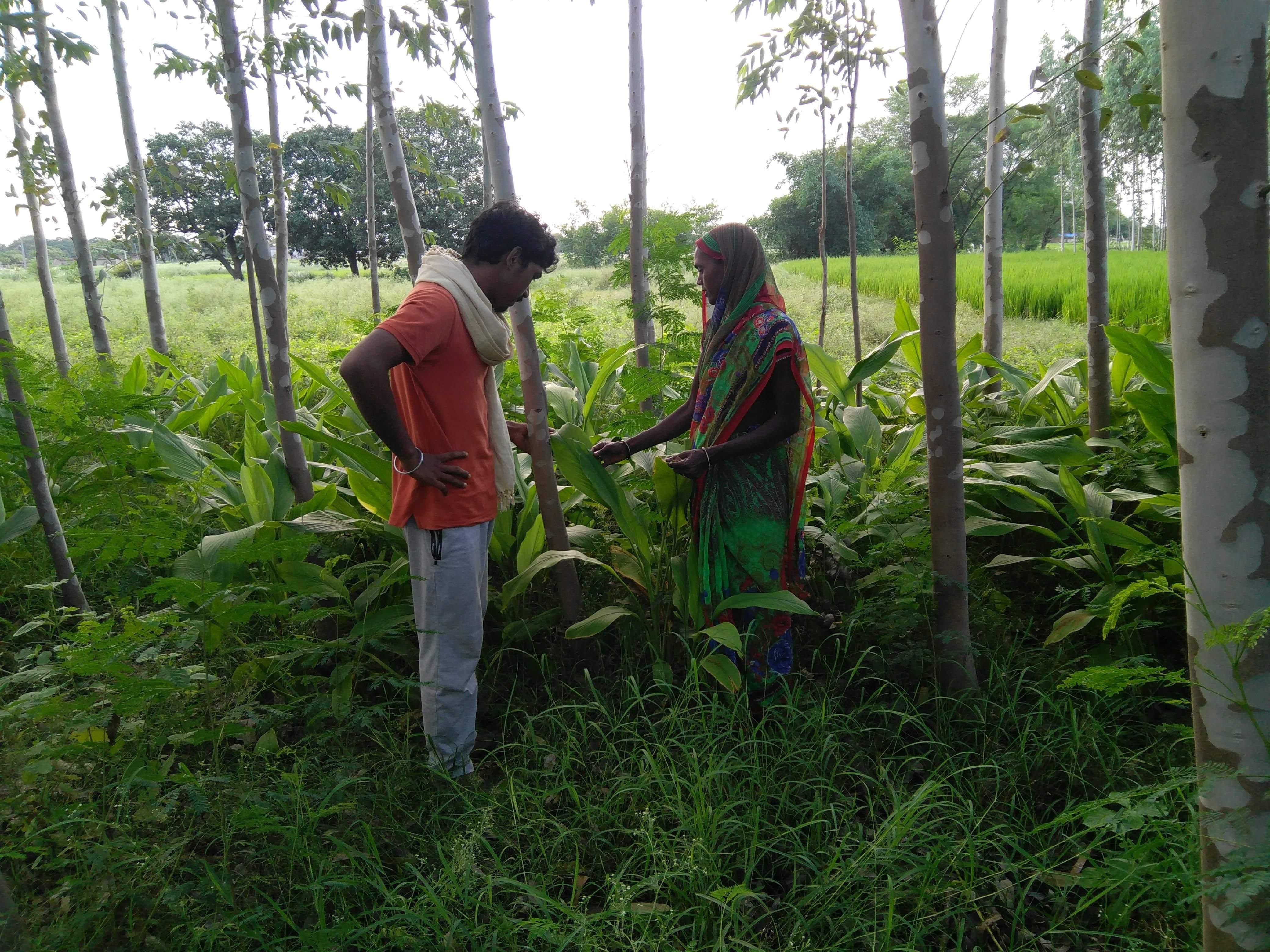Talking_to_a_women_farmer_in_Chandauli,_Uttar_Pradesh