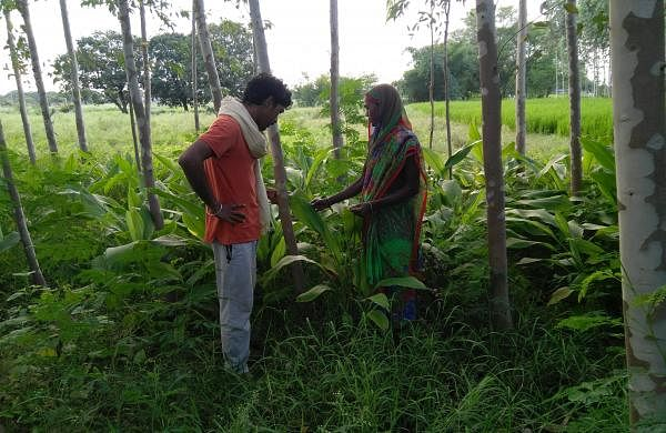 Talking_to_a_women_farmer_in_Chandauli,_Uttar_Pradesh