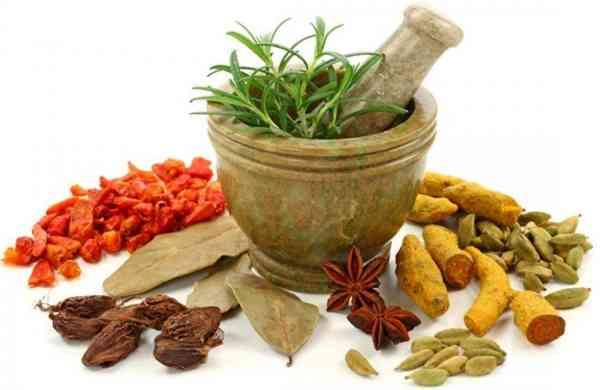 Siddha, Homeopathy, Ayurveda