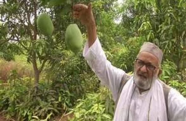 haji_kalimullah_in_his_orchard_1706chn_82