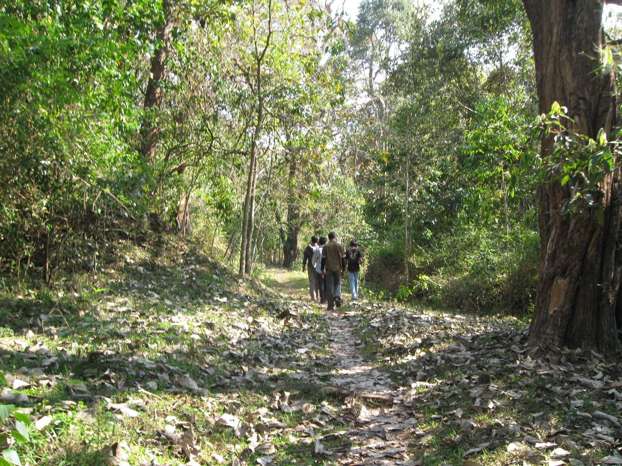 Thekkady_Forest_Trek