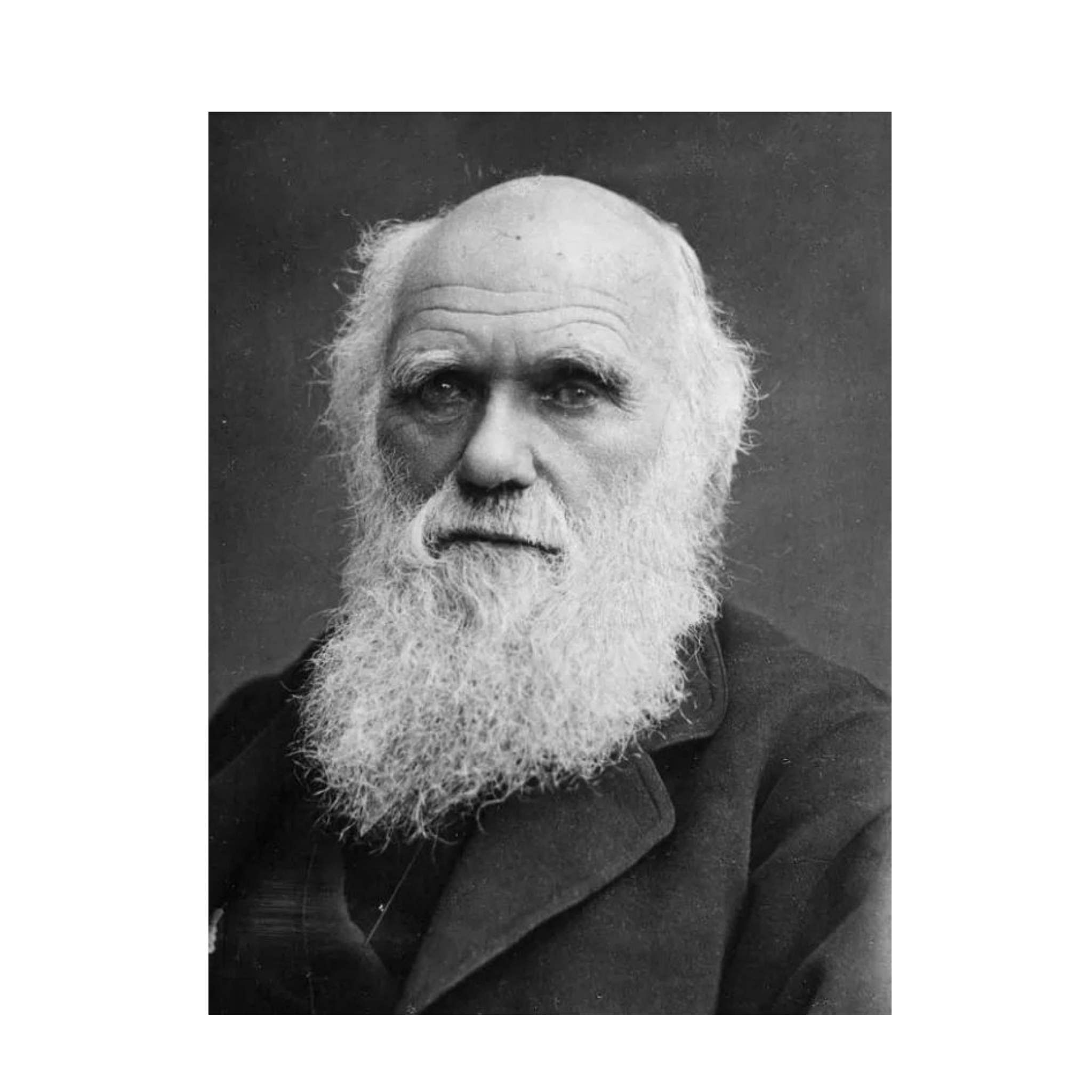 161 years of Evolution theory