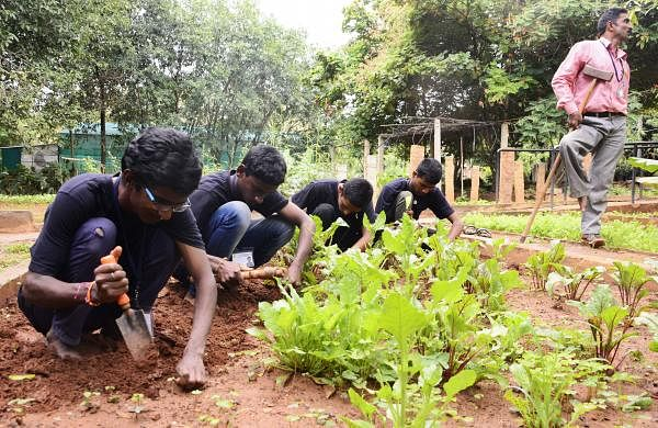 Trainees work in the garden at APD Horticultural Training Center (Pic: Shriram B N)