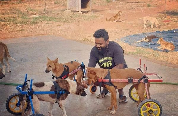 Praveen Kumar with the dogs in his shelter