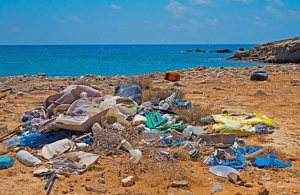 garbage-plastic-waste-beach-environmental-sin