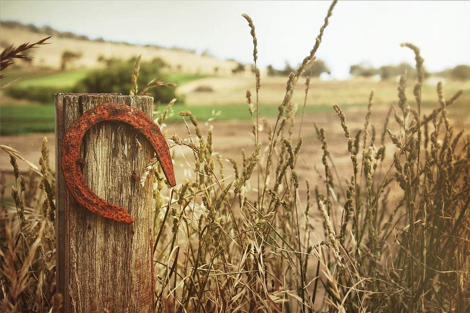 horseshoe-504821_960_720