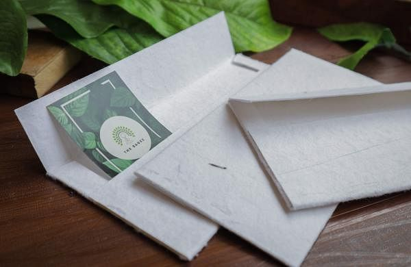 Seed paper envelopes (Pics: The Sagez)