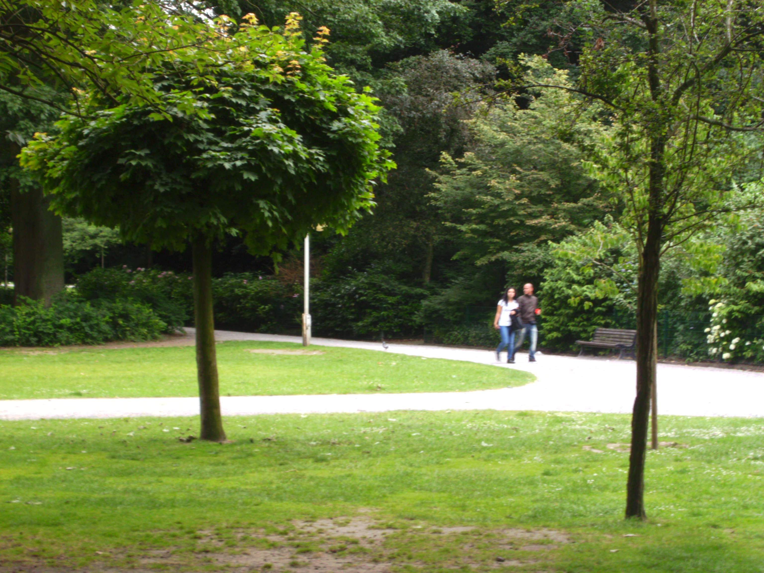 A_Walk_in_the_park
