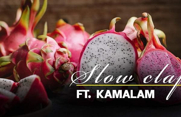 Kamalam was formerly known as dragon fruit